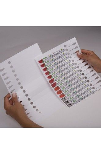 Pre-cut polyester loop labels